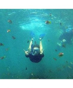 Snorkel Tour and Nature Walk, Manly - Sydney