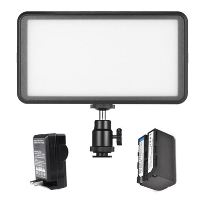Andoer Ultra-thin Studio Video Photo LED Video Light Panel Lamp 3200K/6000K 20W Dimmable 228pcs Beads with 4400mAh Rechargeable Battery + Charger for Canon Nikon DSLR Camera DV Camcorder