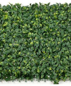 Laurel Vertical Garden / Screen 1m by 1m