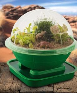 Terra Sphere Dinosaur Garden Dome Kit | Plants Grow Planter Habitat Venus Flytrap
