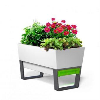 Glowpear Urban Garden | Self Watering Planter